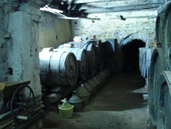 Enoregioni italiane: Materano e Val D'Agri