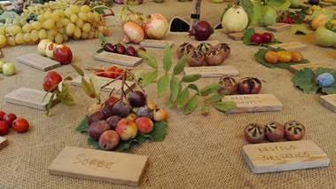 Biodiversità agricola al Rural Market di Parma