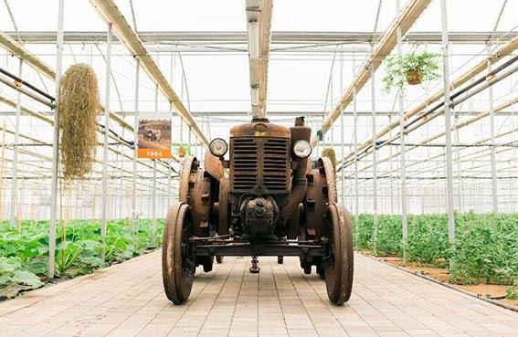 SERRA MADRE: Country Fest e Acro, nuovo museo degli strumenti agricoli
