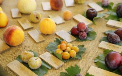 La biodiversità tosco-emiliana al Rural Market di Parma