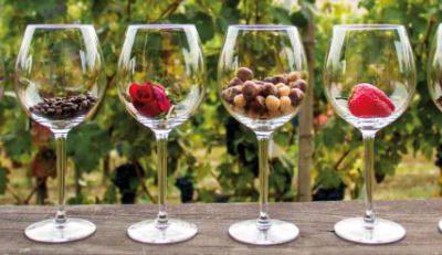 Viaggiatori del vino, istruzioni per l'uso