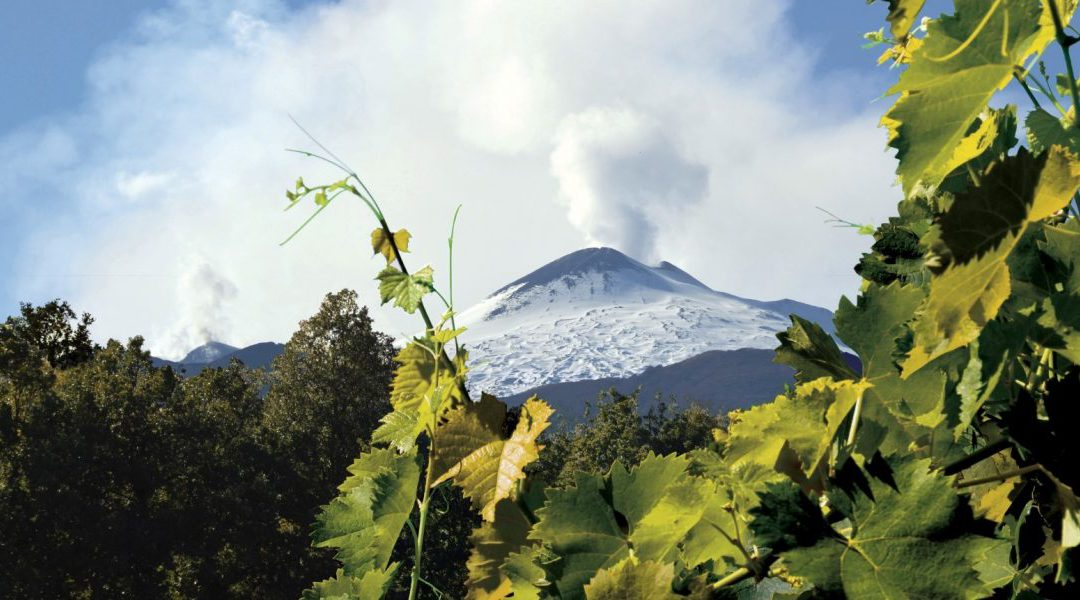 Etna, una risorsa per tutto il vino siciliano