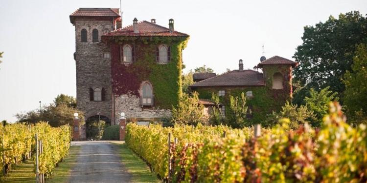 Piacenza, una terra di vitigni
