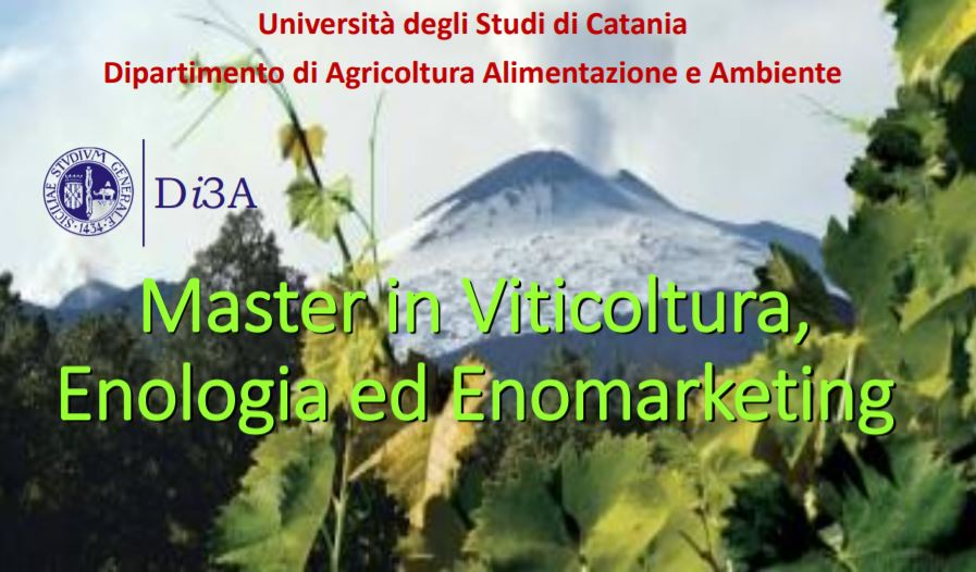 Master in Viticoltura, Enologia ed Enomarketing