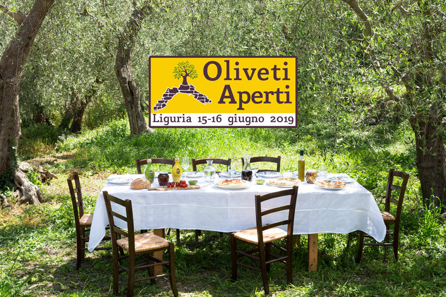 Oliveti Aperti per un week-end green in Liguria