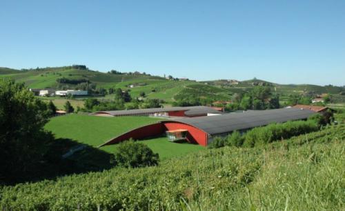 Terre da vino- Barolo (CN)