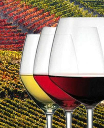 """Convegno """"Monferrato e vino"""""""