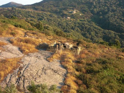 Capannello-palmento  Isola Giglio (GR) (Toscana) - 1