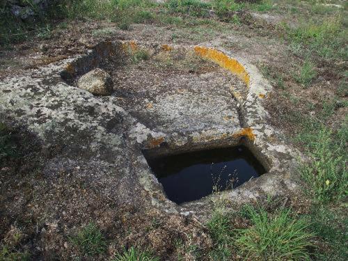 I palmenti rupestri di Ardauli-1 (OR) (Sardegna)