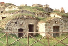 Palmenti  Pietragalla (PZ) (Basilicata) - 2